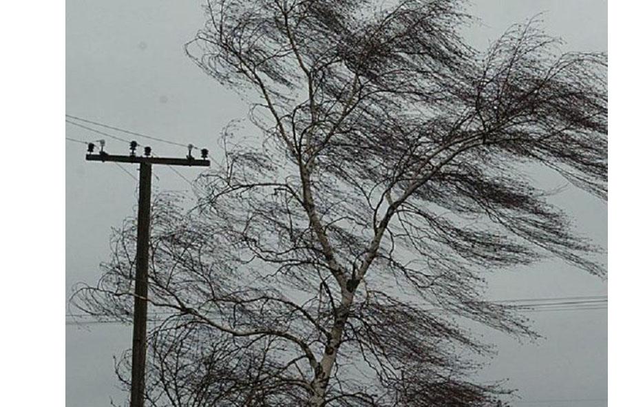 В Абинске объявлено штормовое предупреждение
