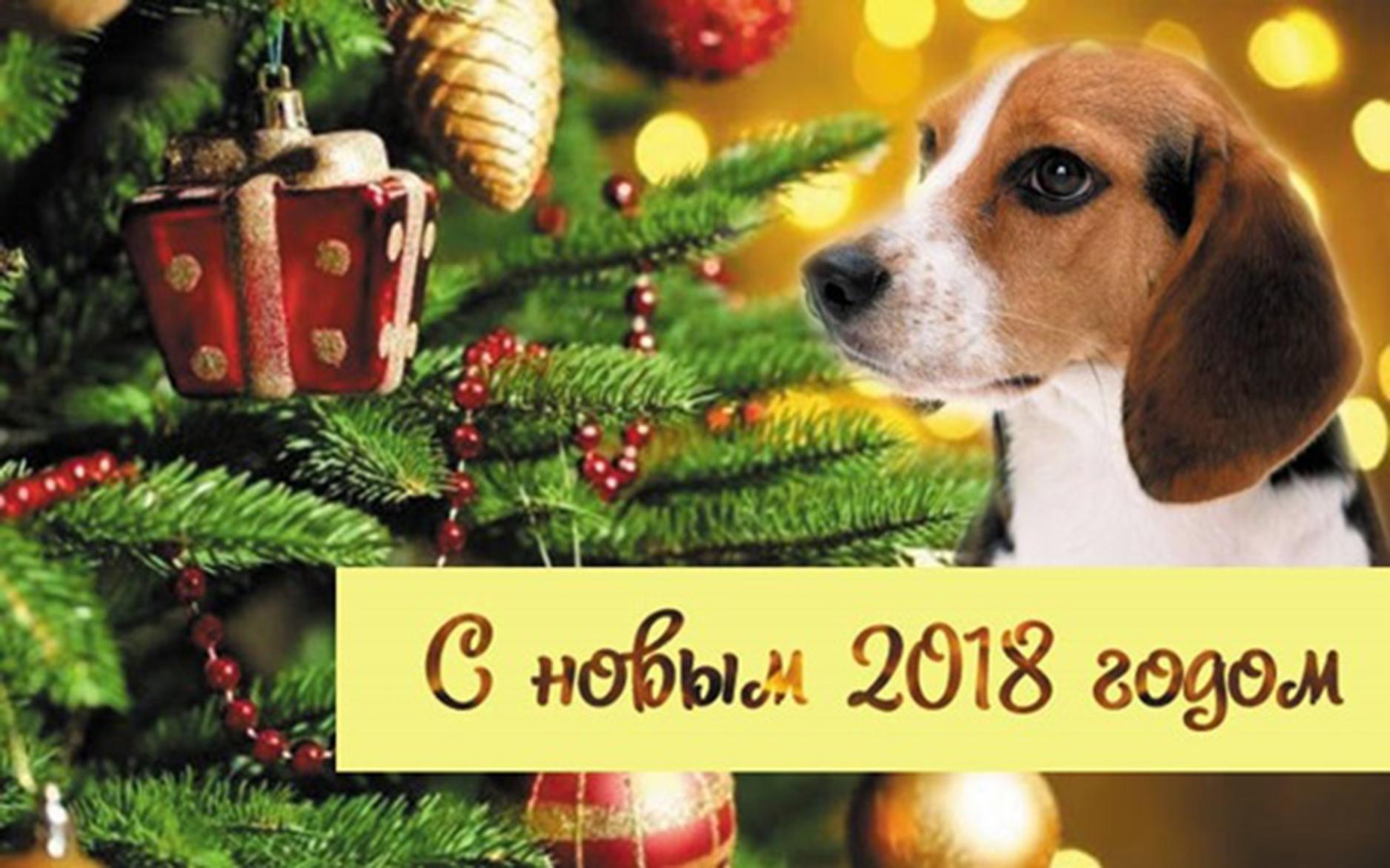 Дорогие друзья!Поздравляем вас с наступающим Новым годом!