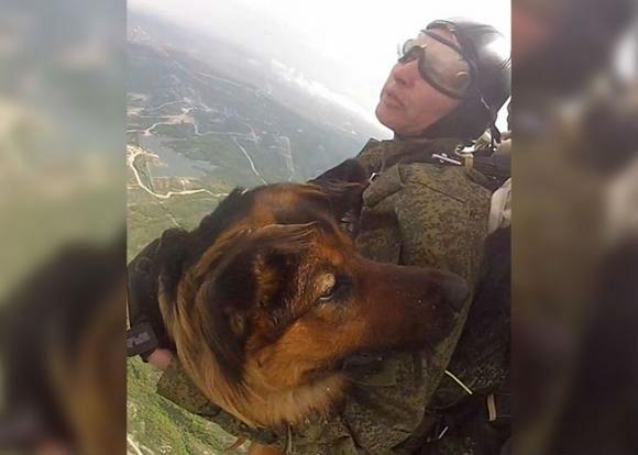 В Новороссийске кинолог прыгнула с парашютом вместе с собакой
