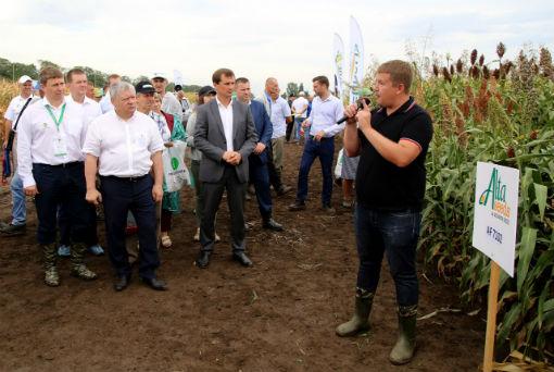 День поля Юга России: площадка для конструктивного диалога аграриев
