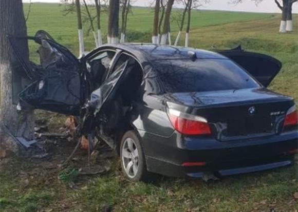 В Абинском районе иномарка врезалась в дерево, пострадали три человека