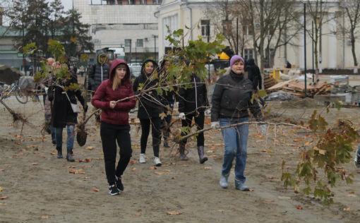 300 саженцев деревьев и кустов были высажены в городском парке