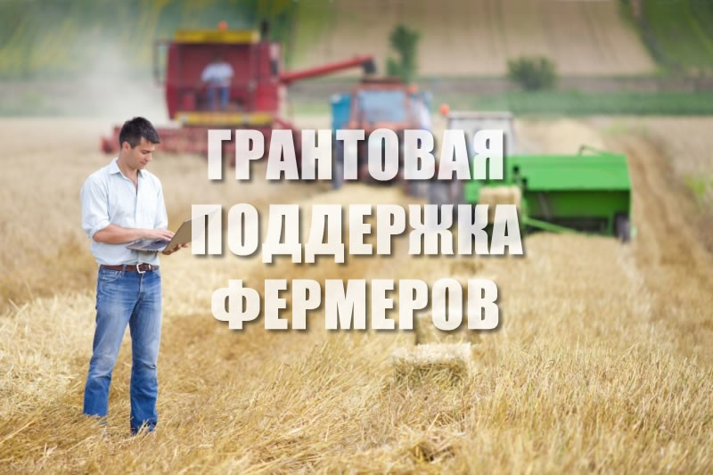 КФХ из Абинского района получили гранты по целевой программе