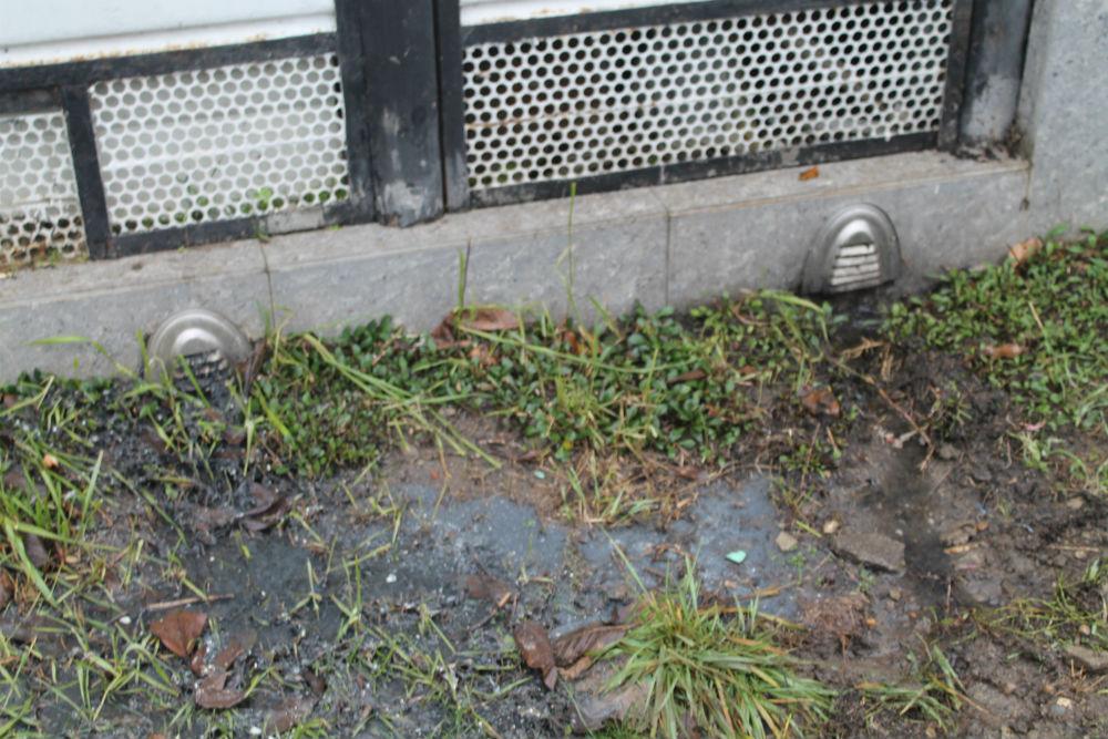 Сливали грязную воду из септика на улицу