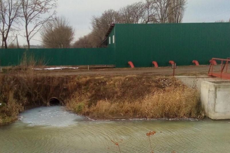 Активисты ОНФ Кубани борются за спасение водного канала в Новокубанске