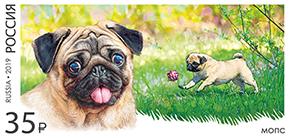 В почтовое обращение вышли марки, посвящённые декоративным породам собак