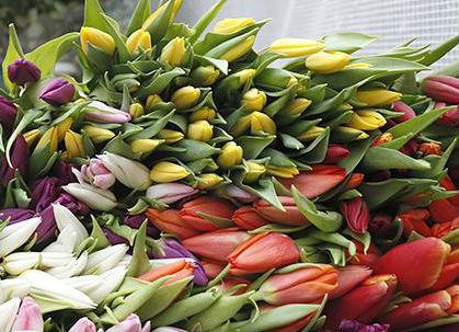 В преддверии 8 Марта в Абинске работают цветочные палатки