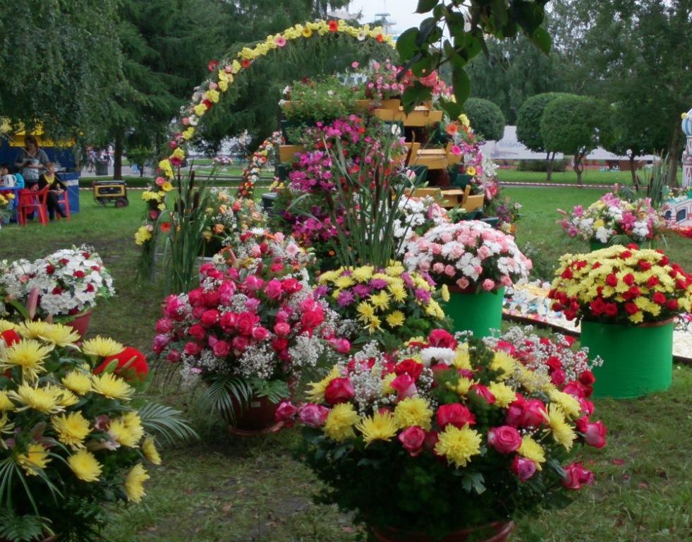 В Абинске пройдет праздник цветов