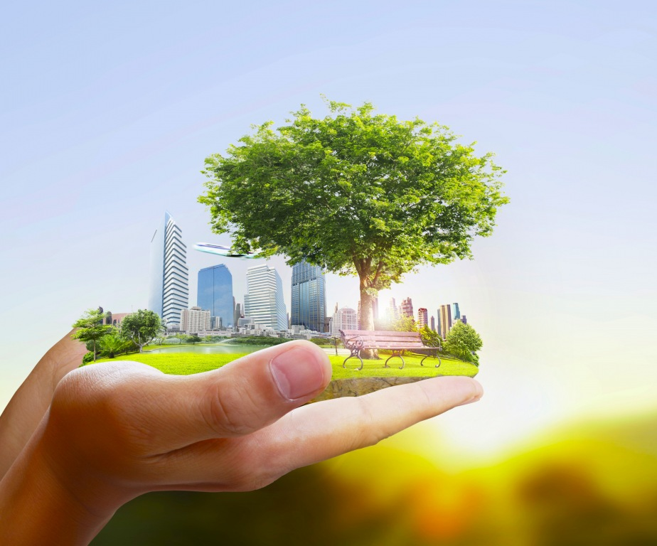 Единороссы обсудили сложившуюся ситуацию с состоянием окружающей среды
