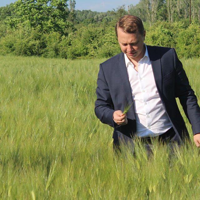 Глава Абинского района осмотрел поля, засеянные ячменем
