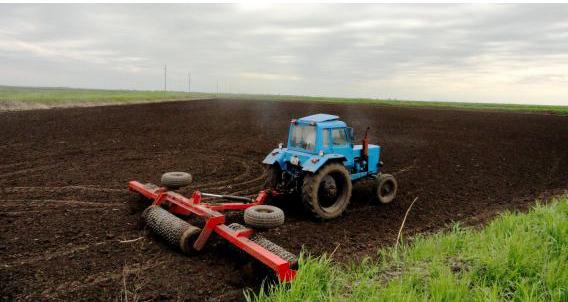 В Абинском районе завершается сев риса