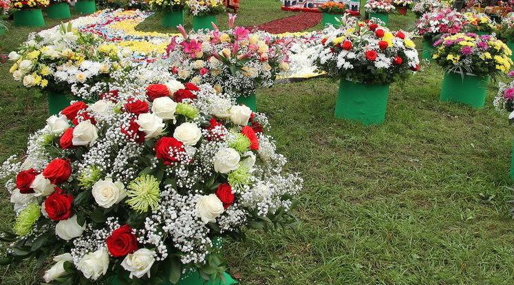 Впервые в Абинске пройдет праздник цветов