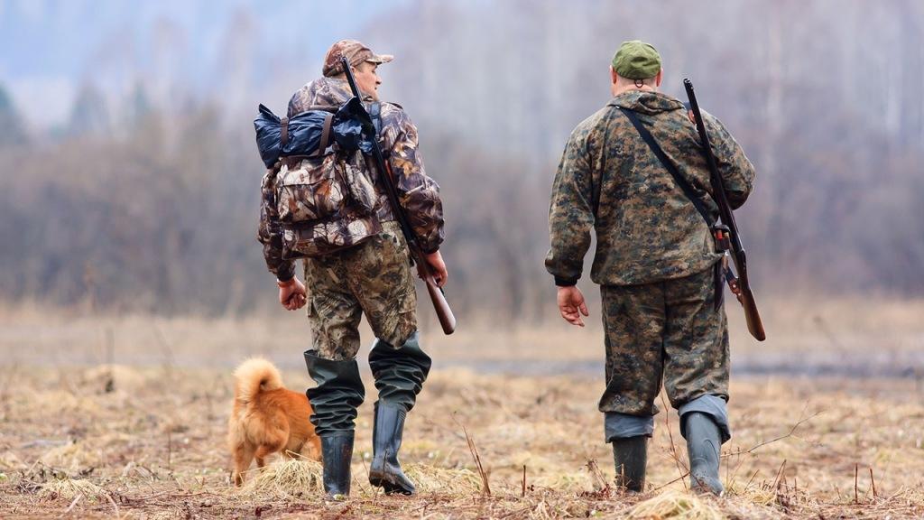 Разрешение на добычу охотники в Абинском районе получат через госуслуги