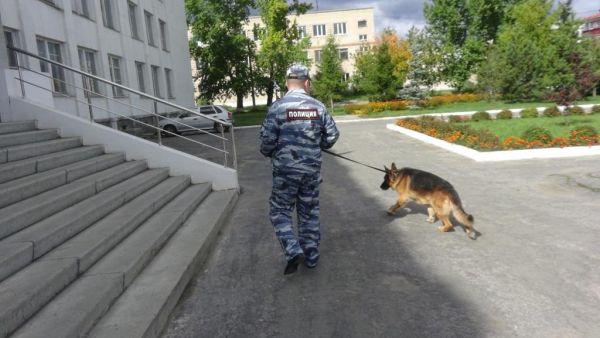 Перед 1 сентября территории школ Абинского района проверят кинологи с собаками
