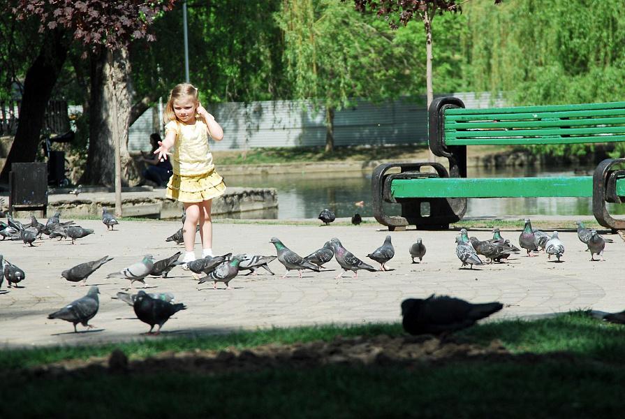 С 6 июня в крае можно посещать парки и набережные