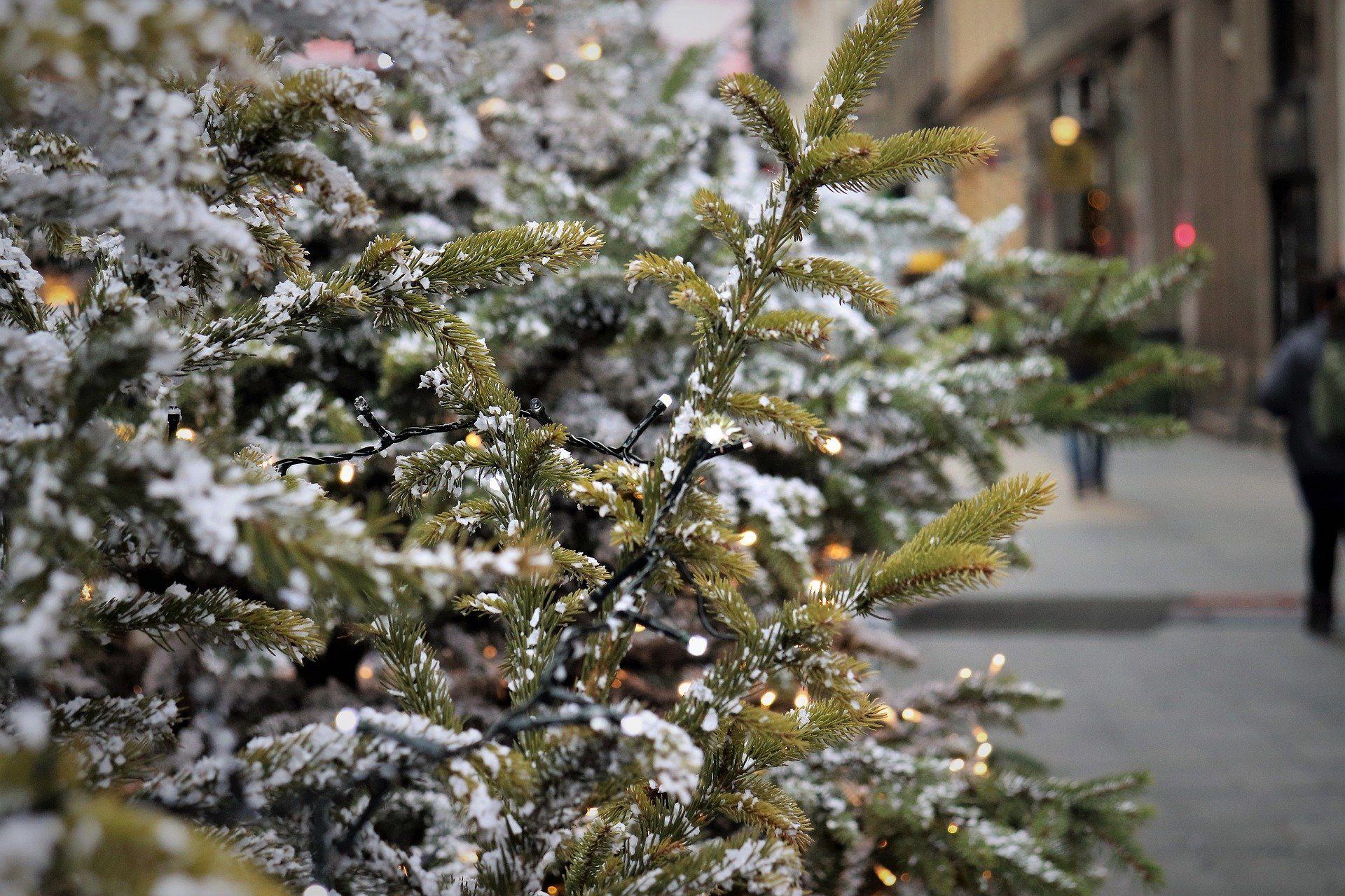 Традиционных новогодних мероприятий и ночных гуляний на Кубани не будет