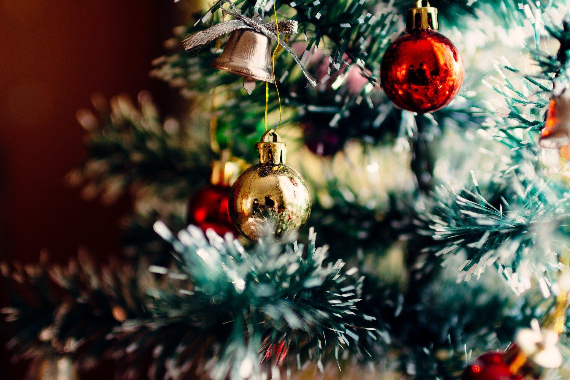Где в Абинске купить елку