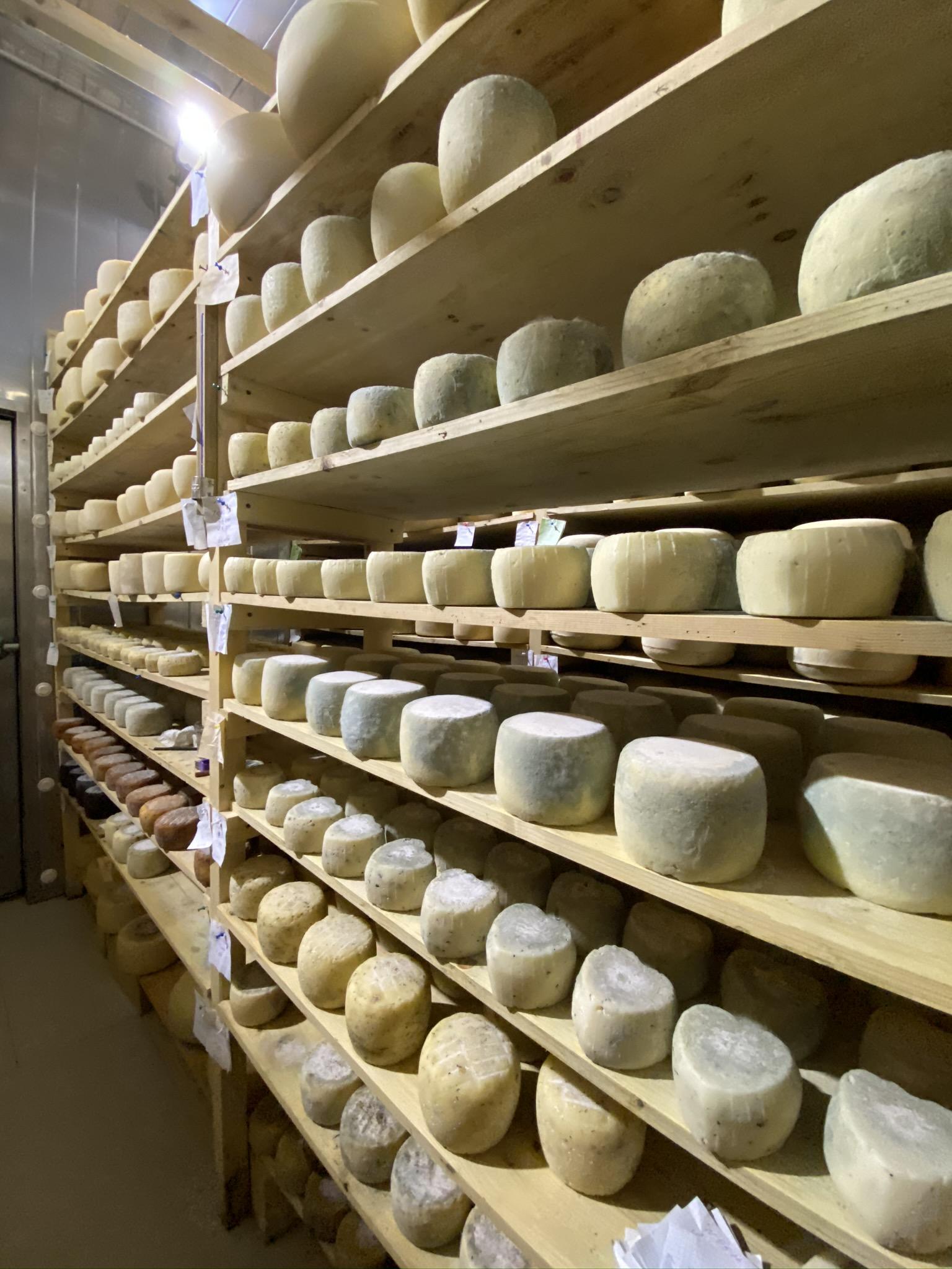 Сыр с благородным акцентом