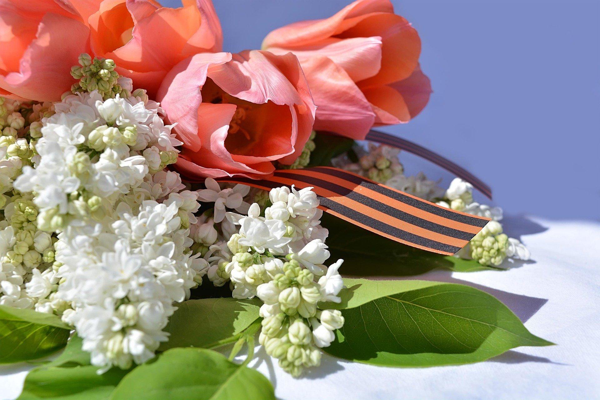 27 апреля на Кубани стартует Международная акция «Георгиевская ленточка»