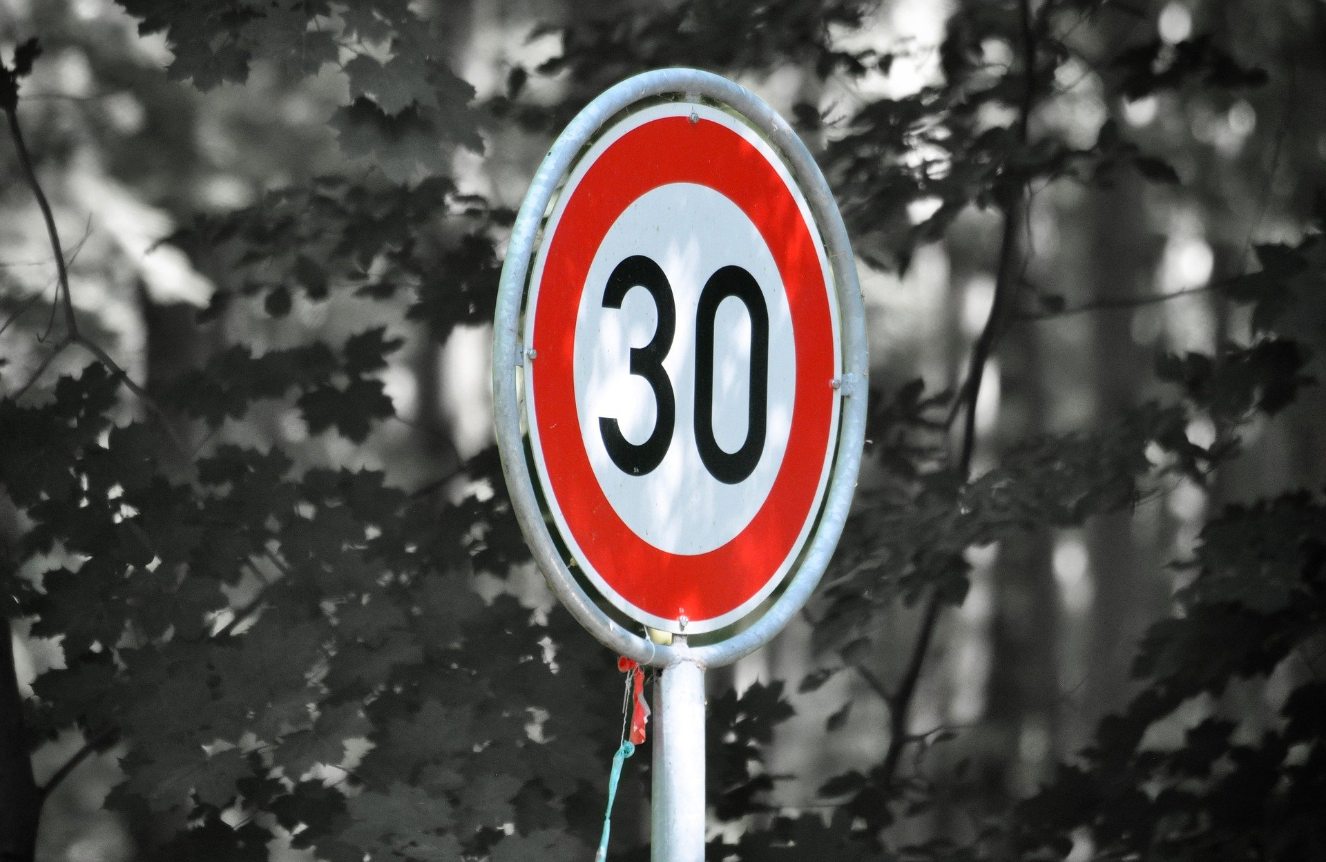 ГИБДД поддержала снижение скорости в городах России до 30 км/ч