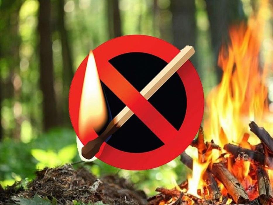 На территории Абинского района с 12 июля действует особый противопожарный режим