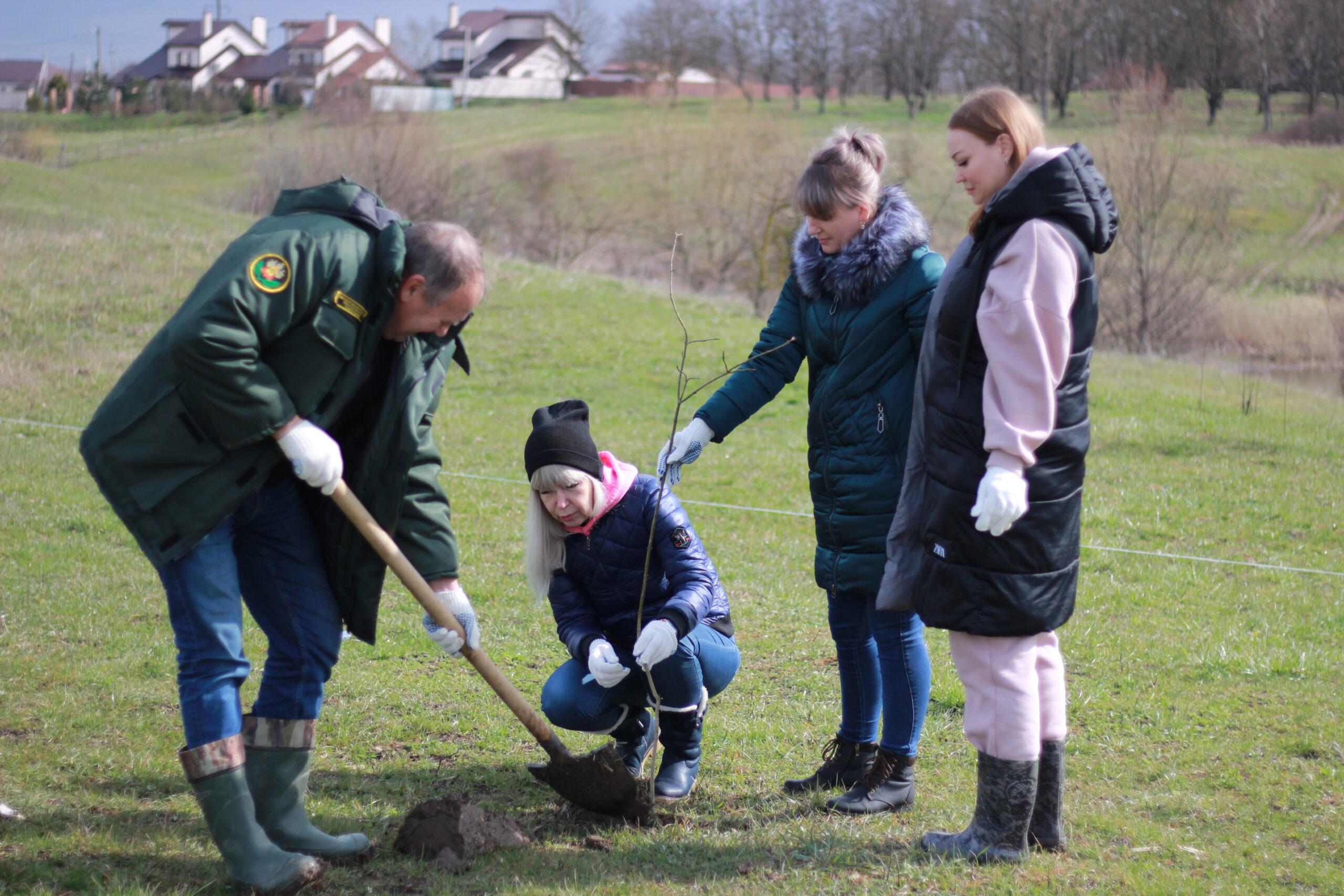 Отряд «Дорогой маленького принца» заботится об экологии в Абинском районе
